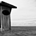Yet another birdy home found on trail 2 with the plains and clouds behind. B&W. Sandy Neck Park, Cape Cod MA