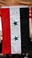 Syrian flag as seen during NAAP\'s NY street festival 2010