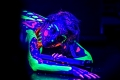 Seduction. Samantha Star and the Black Light Body Paint. Photographers in Philadelphia. Philadelphia, PA