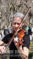 A Violinist in Central Park, NY