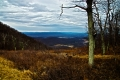 The view from one of the overlooks of Skyline Drive. Shenandoah National Park. Luray, VA