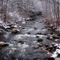 Westfield river along US 20, MA