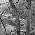 Wissahickon Creek.  Fairmount Park, Philadelphia, PA