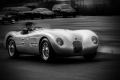 1952 Jaguar C-Type  driven by Fred Simeone. Simeone Automotive Museum Demo Days: Judicious Use . Philadelphia, PA