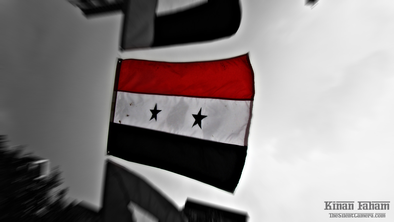Syrian flag as seen during NAAP's NY street festival 2010. Low angle