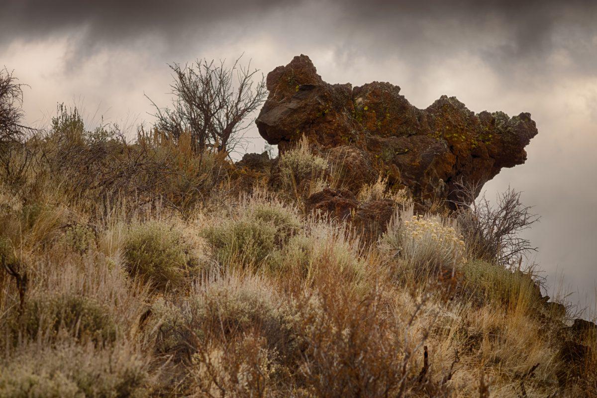 Bunchgrass Trail & Schonchin Butte, Lava Beds National Monument, CA